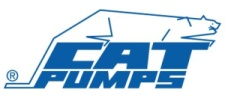 Cat Pumps 2SFX20ES Plunger Power Washer Pump